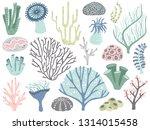 aquarium corals and seaweed.... | Shutterstock . vector #1314015458