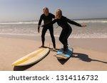 side view of active caucasian... | Shutterstock . vector #1314116732