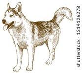 vector antique engraving...   Shutterstock .eps vector #1314126278