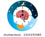 the circadian rhythms vector... | Shutterstock .eps vector #1314192485