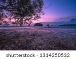 the background of the twilight... | Shutterstock . vector #1314250532
