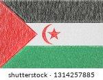 sahrawi arab democratic... | Shutterstock . vector #1314257885