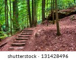 Old stone stair in the mystic woods. - stock photo