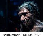 Headshot  Of  Male Neanderthal...