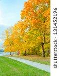 Colorful autumn park - stock photo
