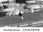 italy  sicily  mediterranean... | Shutterstock . vector #1314658598