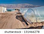 growing organic food in moshav... | Shutterstock . vector #131466278