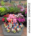 Garden Gnome Flowers In A...