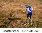 england  cumbria  ennerdale ... | Shutterstock . vector #1314931352