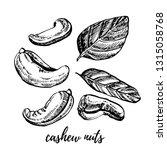 cashew nuts sketch... | Shutterstock . vector #1315058768