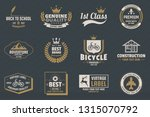 vintage retro vector logo for... | Shutterstock .eps vector #1315070792