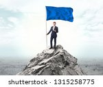 handsome businessman on the top ... | Shutterstock . vector #1315258775