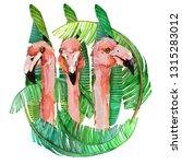 Flamingo Birds Watercolor...