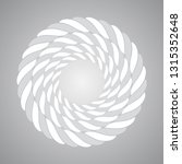 vector rope abstract circle.... | Shutterstock .eps vector #1315352648