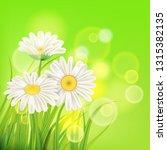 fresh spring juicy chamomile... | Shutterstock .eps vector #1315382135