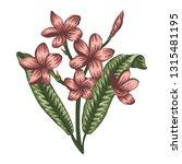 vector illustration of colored... | Shutterstock .eps vector #1315481195