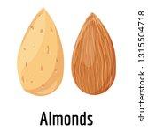 almonds icon. cartoon of... | Shutterstock .eps vector #1315504718