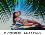 woman in bikini laying on... | Shutterstock . vector #1315554308