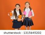 girls kids school uniform... | Shutterstock . vector #1315645202