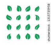 mint leaves. peppermint melissa ... | Shutterstock .eps vector #1315735958