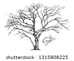 hand drawn tree isolated on... | Shutterstock .eps vector #1315808225