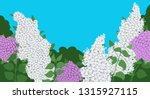 branches with lilac flowers ... | Shutterstock .eps vector #1315927115