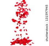 Stock photo falling petals of roses 131597945