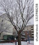 snow time enjoy | Shutterstock . vector #1315988258