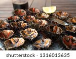 close up of fresh sea urchins | Shutterstock . vector #1316013635