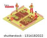 isometric farm garden... | Shutterstock .eps vector #1316182022