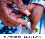 detail of hand holding rare...   Shutterstock . vector #1316211908