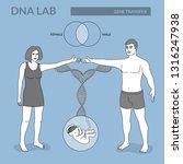 dna lab. gene transfer from... | Shutterstock .eps vector #1316247938