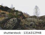 autumn mountain river stream...   Shutterstock . vector #1316312948
