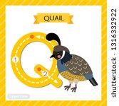 letter q uppercase cute... | Shutterstock .eps vector #1316332922