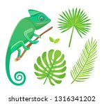 chameleon sitting and looking... | Shutterstock .eps vector #1316341202