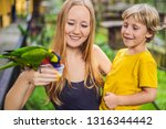 mom and son feed the parrot in... | Shutterstock . vector #1316344442