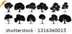 tree silhouettes on white... | Shutterstock .eps vector #1316360015