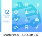 12 medical vector icons ... | Shutterstock .eps vector #1316385842