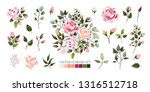 set of pale pink rose flowers...   Shutterstock .eps vector #1316512718