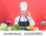 culinary expert. woman chef...   Shutterstock . vector #1316524892