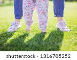 cropped view of mother... | Shutterstock . vector #1316705252