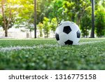 Small photo of soccer Football on soccer field , football field , background texture