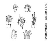 housee plants floral doodle... | Shutterstock .eps vector #1316851478