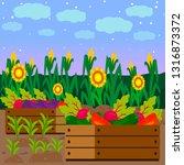 vegetables in wooden crate... | Shutterstock .eps vector #1316873372