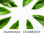 spring background with young... | Shutterstock . vector #1316882315