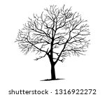 tree silhouettes on white... | Shutterstock .eps vector #1316922272