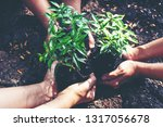 hands team work and family...   Shutterstock . vector #1317056678