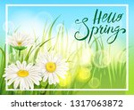 spring daisies  chamomiles...   Shutterstock .eps vector #1317063872
