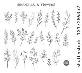 set of branches. hand drawn... | Shutterstock . vector #1317286352
