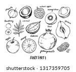 hand drawn vector illustration  ... | Shutterstock .eps vector #1317359705